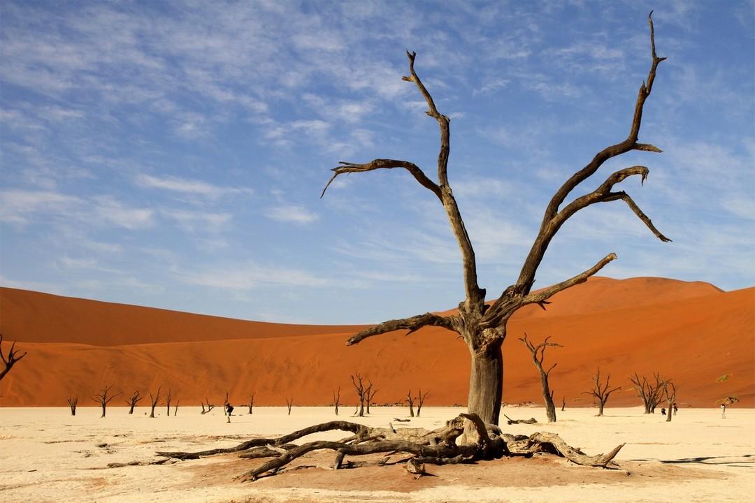 Társkereső namíbia swakopmund